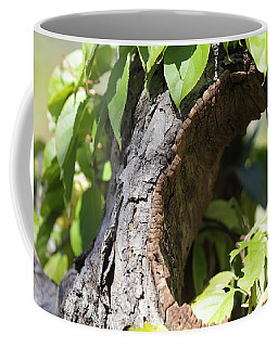 Hole Coffee Mug