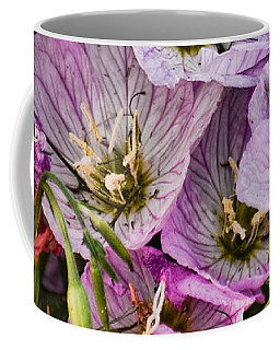 Holly Hocks - 1 Coffee Mug by Greg Jackson