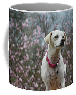 Holly Spring Coffee Mug