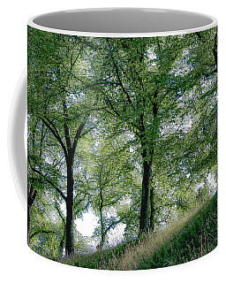 Homage To Carl Larsson Coffee Mug