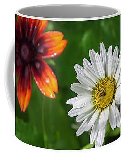 Home Furnishings Coffee Mug