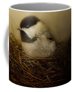 Home Tweet Home Coffee Mug