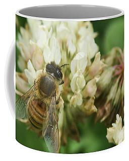 Coffee Mug featuring the photograph Honey Bee by Pamela Walton