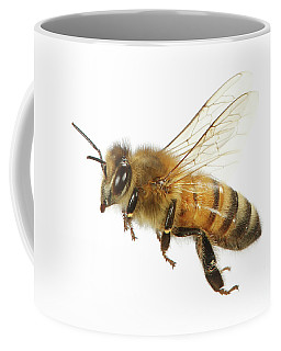 Honey Bound Coffee Mug