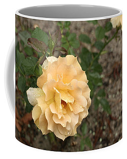 Honey Coffee Mug