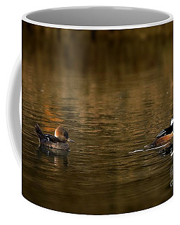 Hooded Mergansers Coffee Mug
