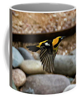 Coffee Mug featuring the photograph Hooded Oriole H37 by Mark Myhaver