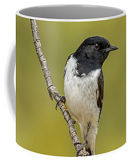 Hooded Robin Coffee Mug