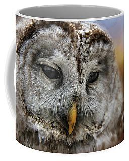 Hoothoot Coffee Mug by Davandra Cribbie