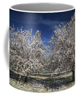 Coffee Mug featuring the photograph Hopes And Dreams by Laurie Search