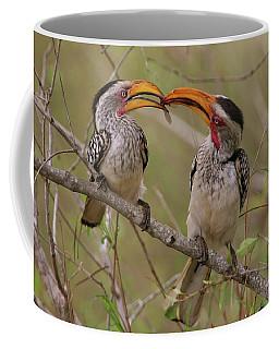Hornbill Love Coffee Mug