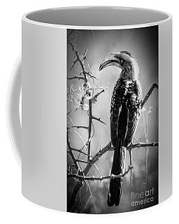 Hornbill Resting Coffee Mug by Pravine Chester