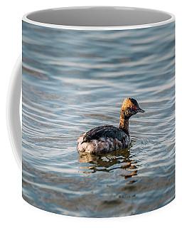 Horned Grebe Swimming In The Chesapeake Bay Coffee Mug