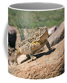 Horny Toad Coffee Mug