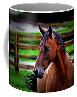 Coffee Mug featuring the photograph Horse 004 by George Bostian