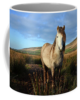Horse Coffee Mug by Barbara Walsh