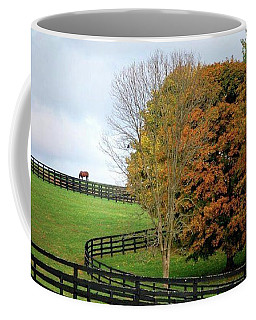 Coffee Mug featuring the photograph Horse Farm Country In The Fall by Sumoflam Photography