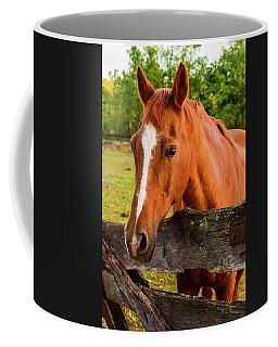 Horse Friends Coffee Mug