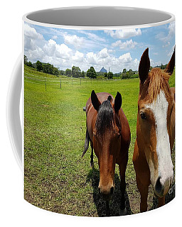 Horse Friendship Coffee Mug