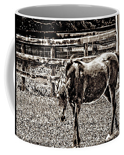 Horse In Black And White Coffee Mug