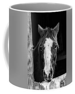 Horse Looking Through Stall Coffee Mug