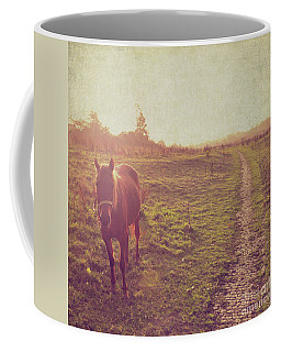 Horse Coffee Mug by Lyn Randle