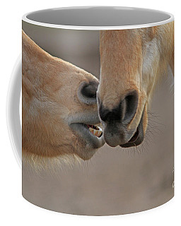 Horse Whisperer  Coffee Mug