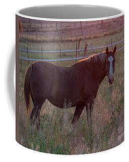 Horses 2 Coffee Mug