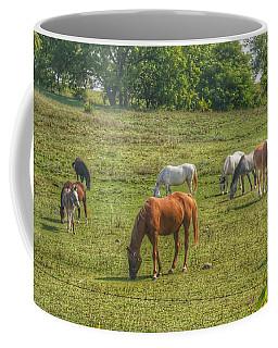 1003 - Horses In A Pasture I Coffee Mug