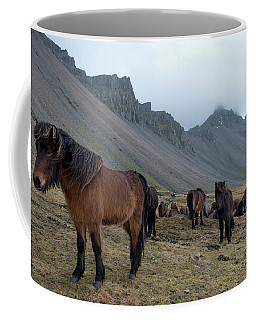 Coffee Mug featuring the photograph Horses Near Vestrahorn Mountain, Iceland by Dubi Roman