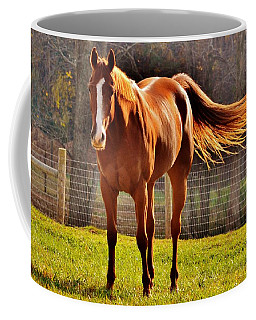 Horse's Tail Coffee Mug