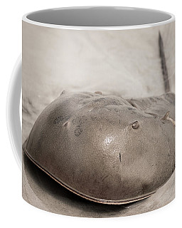 Horseshoe Crab Coffee Mug