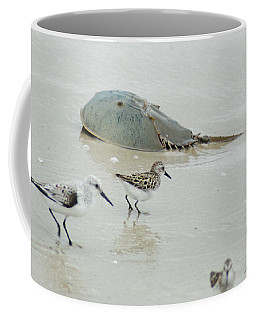 Coffee Mug featuring the photograph Horseshoe Crab With Migrating Shorebirds by Richard Bryce and Family