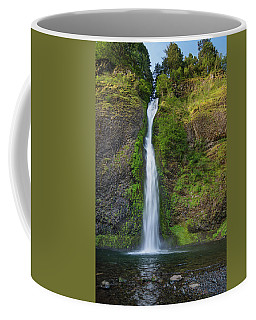 Horsetail Falls In Spring Coffee Mug by Greg Nyquist