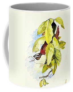 Horsfield's Babbler  Coffee Mug