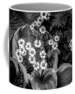Hosta Daisies Coffee Mug