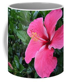 Hot Pink Hibiscus 1 Coffee Mug