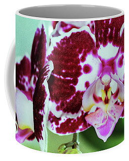 Coffee Mug featuring the photograph Hot Pink Moth Orchid Close Up by Shawna Rowe