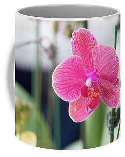 Hot Pink Orchid Coffee Mug by Nance Larson