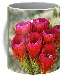 Coffee Mug featuring the photograph Hot Pink Torch Cactus Bouquet  by Saija Lehtonen