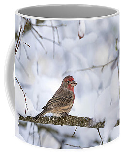 House Finch In Snow Coffee Mug