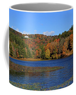 House In The Mountains Coffee Mug