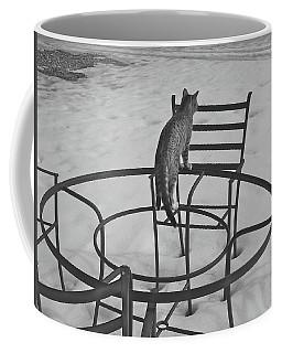 Housesitting 16 Coffee Mug