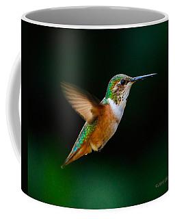 Hovering Allen's Hummingbird Coffee Mug
