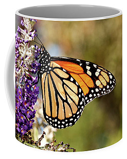 Coffee Mug featuring the photograph Hues Of Autumn Monarch by Lara Ellis