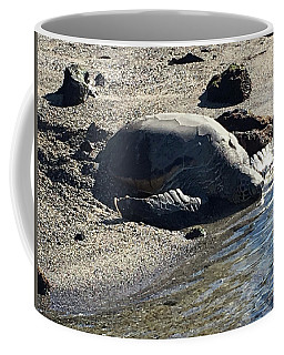 Huge Sea Turtle Coffee Mug