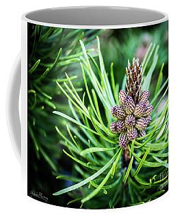Humble Beginnings Coffee Mug