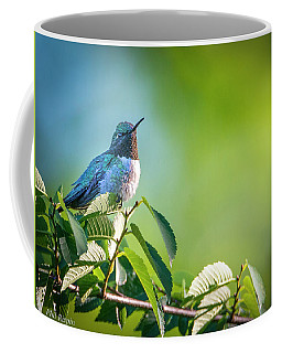 Hummer Surveying His Kingdom Coffee Mug
