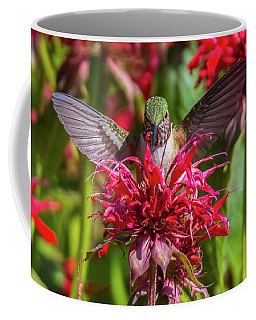 Hummingbird At Eagles Nest Coffee Mug