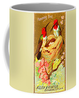 Humming Bird Victorian Tobacco Card By Allen And Ginter Coffee Mug